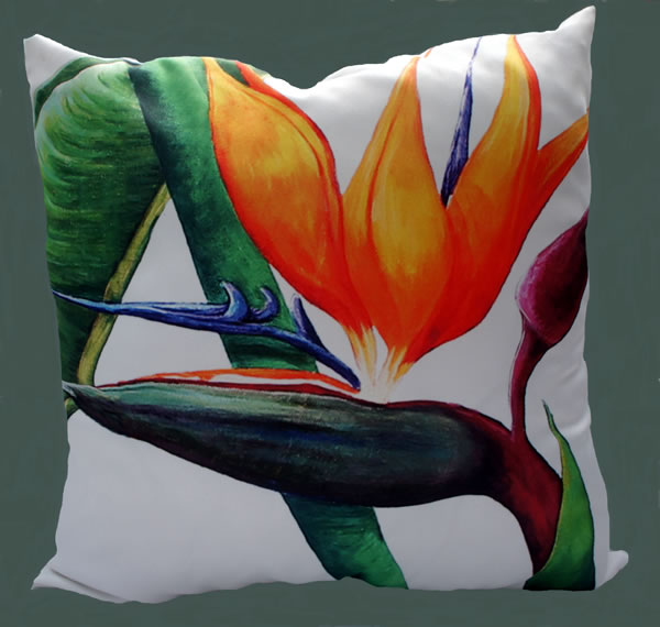 Majestic scatter 3 Strelitzia scatter cushions