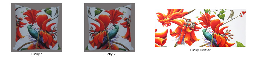 Lucky cushion covers